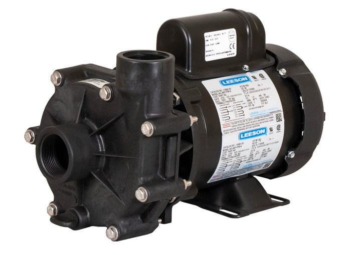 ValuFlo 1000 Pump with Leeson Motor right angle view