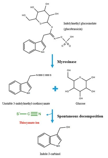 Thiocyanate Ion : thiocyanate, Full-Text, Thiocyanate, Modulating, Myeloperoxidase, Activity, During, Disease