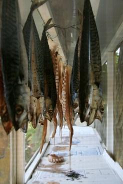 Sea food, Thassos Taverna