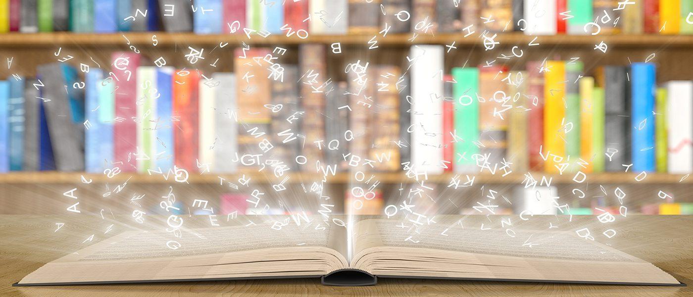 MDR-literacy