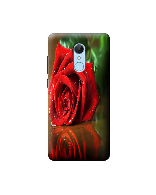 Redmi 5 Mobile Back cover (red rose)