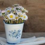 Πως θα διατηρήσουμε τα λουλούδια στο βάζο