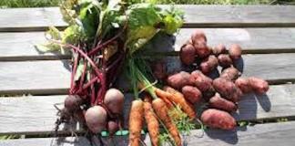Πως διατηρούμε πατάτες, καρότα, παντζάρια