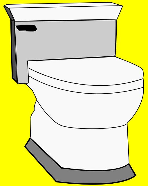 Καθαρίζουμε οικολογικά την τουαλέτα – WC