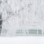 winter-1367153_640