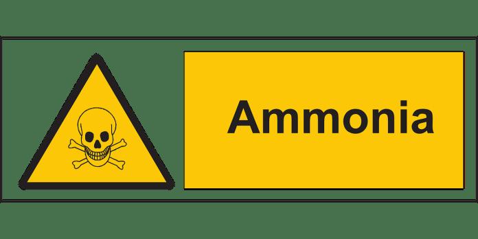 Ονειροκρίτης για αμμωνία