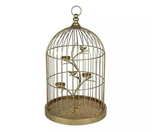 Βάλτε παχύφυτα στο κλουβί