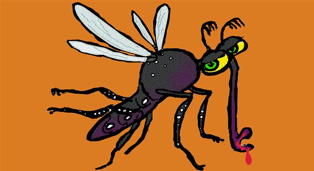 Τι μάθαμε για το κουνούπι Τίγρης από τον Γάλλο γιατρό