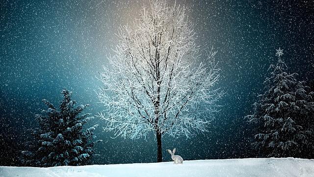 Πως να φτιάξεις  Χριστουγεννιάτικες κάρτες που θα εντυπωσιάσουν