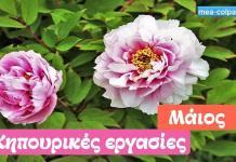 Οι κηπουρικές εργασίες του Μαΐου