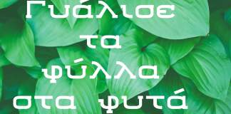 Ενα άλλο κόλπο για να γυαλίσεις τα φύλλα στα φυτά