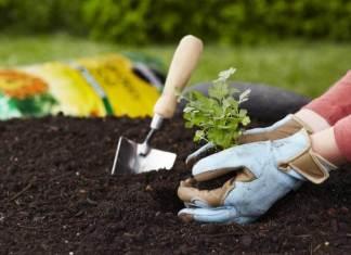 Εξυπνα κόλπα κηπουρικής