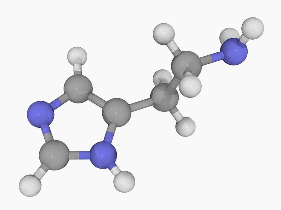 Τι είναι η ισταμίνη;