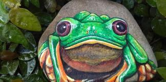 Ζωγραφίστε βατραχάκια στα βοτσαλάκια