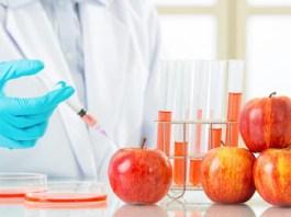 Τι είναι τα γενετικά τροποποιημένα τρόφιμα