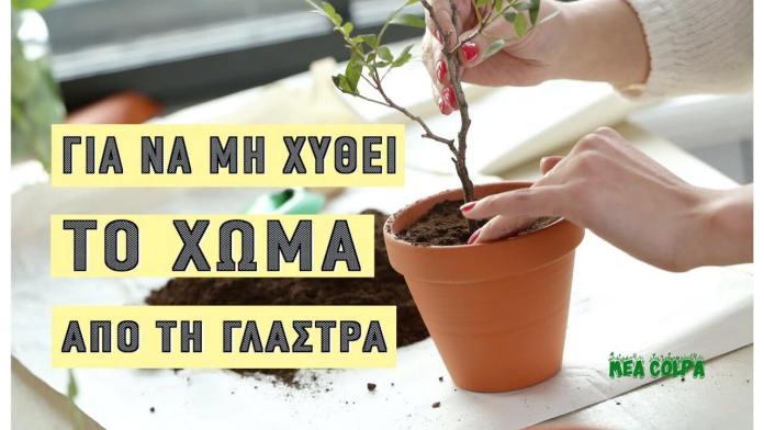 Πότισε τα λουλούδια, χωρίς να χυθεί το χώμα έξω από τη γλάστρα