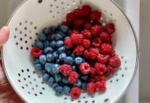 Ποια φρούτα ανήκουν στα Μουροειδή