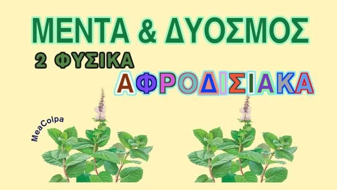 Δυόσμος & Μέντα – βότανα αφροδισιακά & όχι μόνο