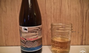 House Bear Brewing Paradise Unpaved Review