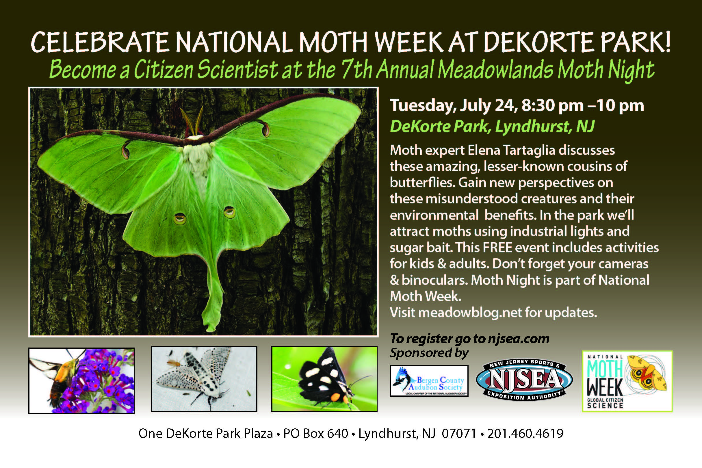 Image result for Moth Week at DeKorte Park