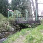 Thornton Creek