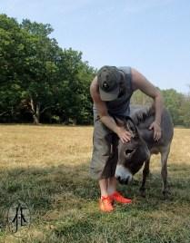 Truls pets a donkey