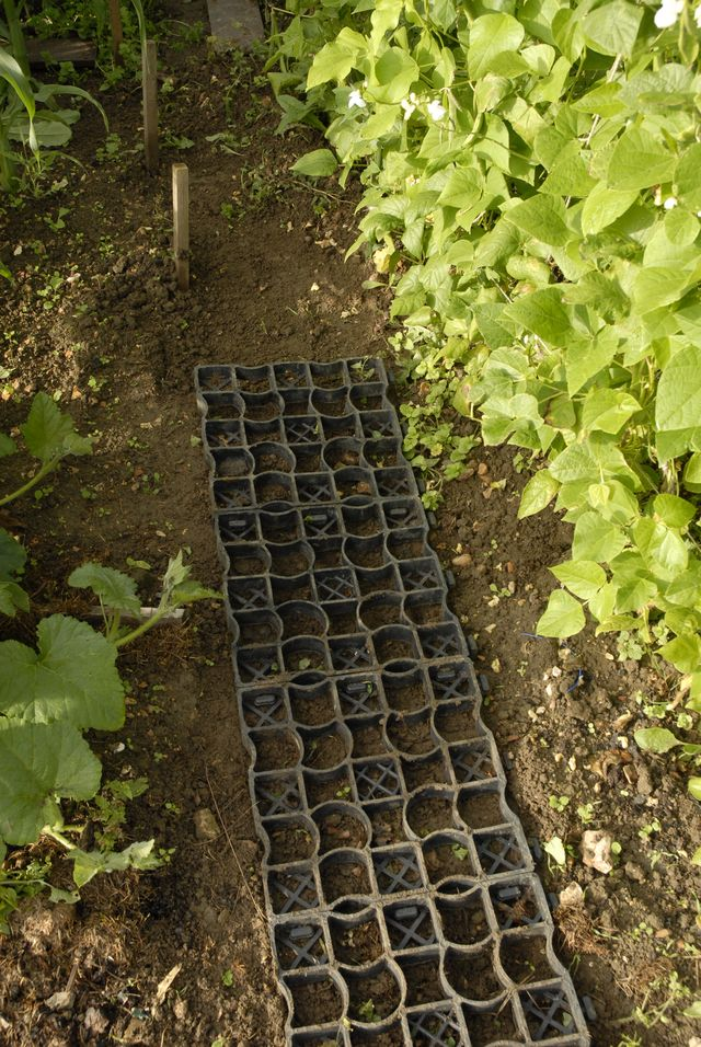 Recycled Plastic Projects Filcris Allotment Garden Walkway