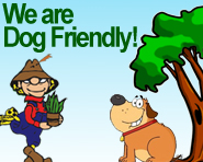 We are dog friendly!