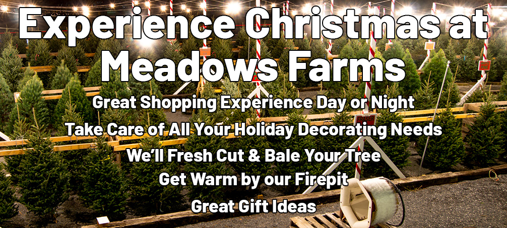 Experience Christmas at Meadows Farms. Great Shopping Experience Day or Night. Take Care of All Your Holiday Decorating Needs. We'll Fresh Cut & Bale Your Tree. Get Warm by our Firepit. Great Gift Ideas.
