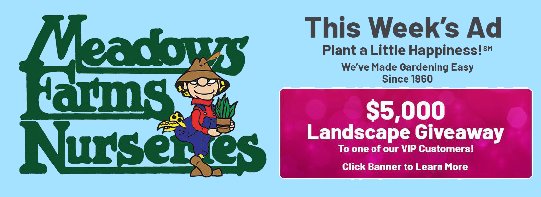 Meadows Farms Nurseries. What's On Sale This Week. We Make GARDENING Easy! Planting a Little Happiness Since 1960. $5,000 Landscape Giveaway to one of our VIP customers! Click banner to Learn More