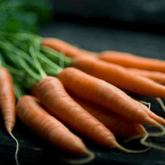 fresch carrots