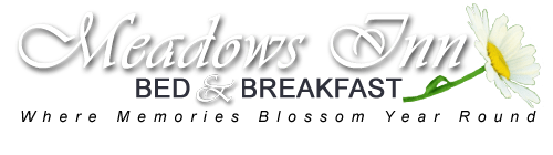 Meadows Inn Bed and Breakfast New Bern NC