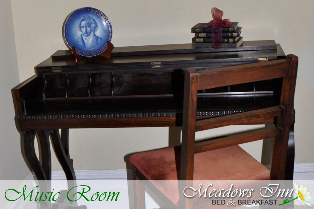meadowsinn-musicroom5