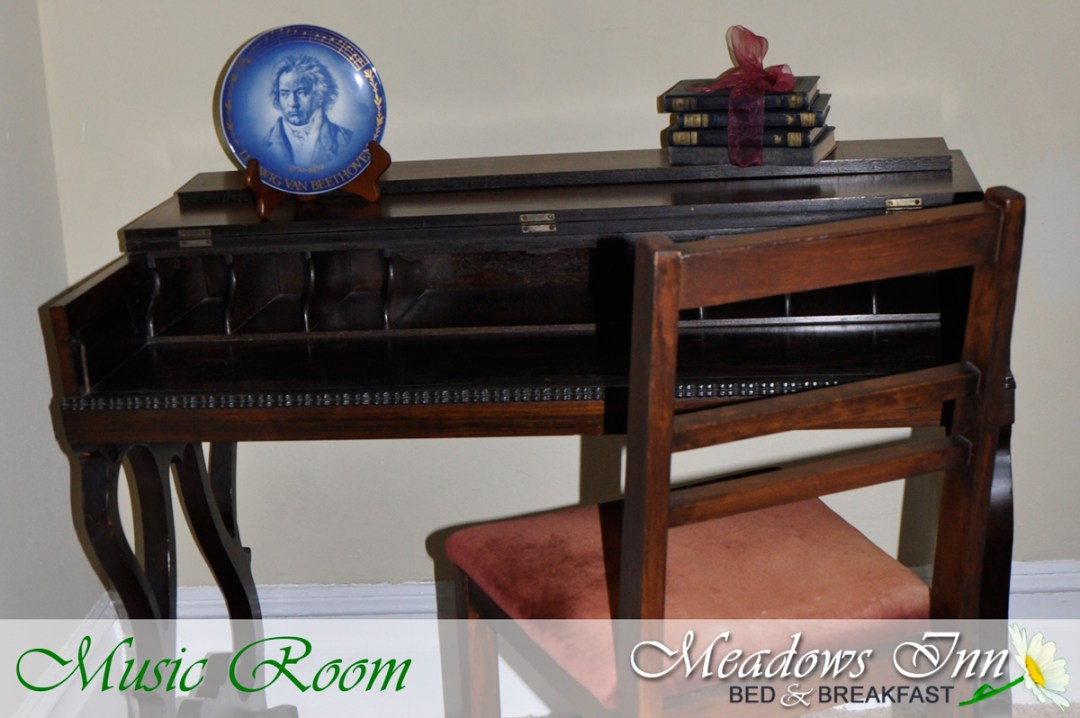 meadowsinn-musicroom5