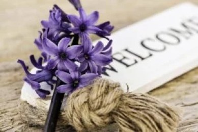 hyacinths to welcome guests for event management