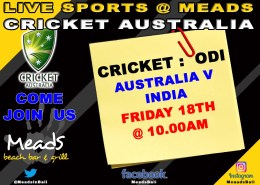 CRICKET Australia : One Day International LIVE @ Meads