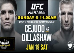 UFC 143 Fight Night LIVE @ Meads in Bali