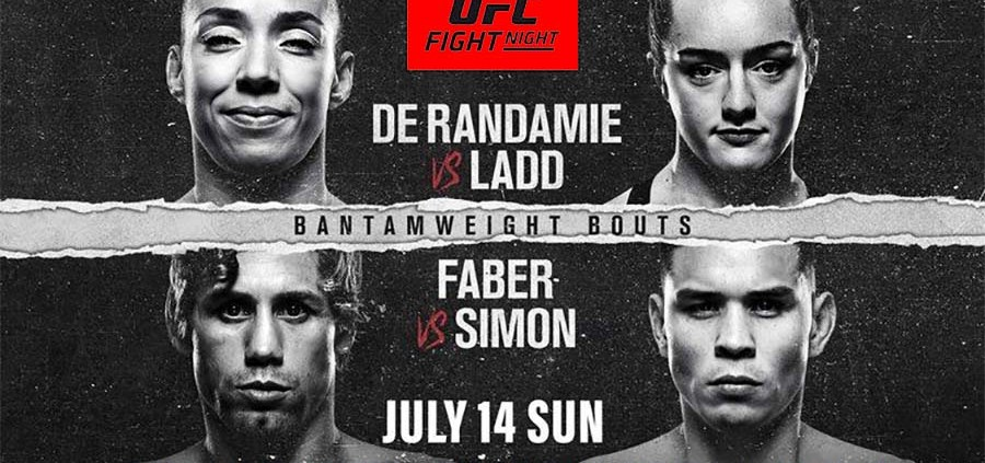 UFC Fight Night Live Meads in Bali