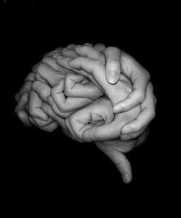 art-brain-hands-photography-favim-com-3432254