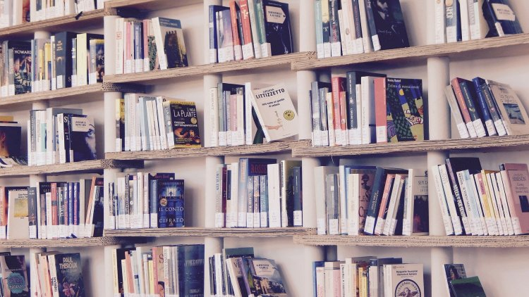 how to write a book review library shelf of books