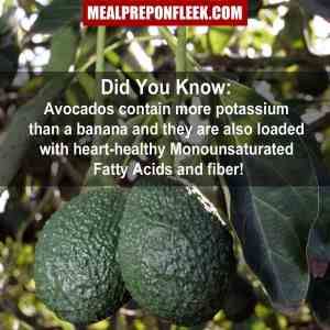 avocado nutrition fact