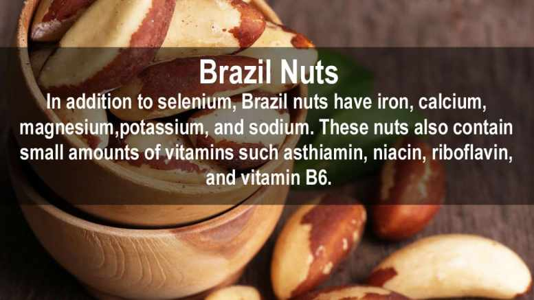 brazil nuts nutrition fact