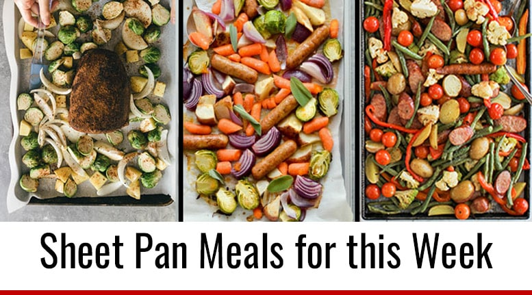 Plant Based Recipes For Beginners Snacks