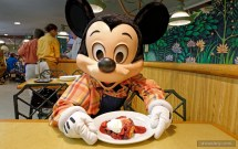 Garden Grill Lunch And - Epcot Posted