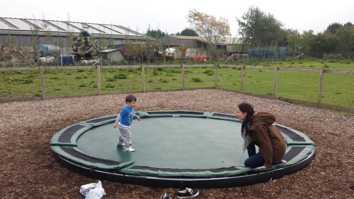 puxton park north somerset tourist attraction families review cost opening