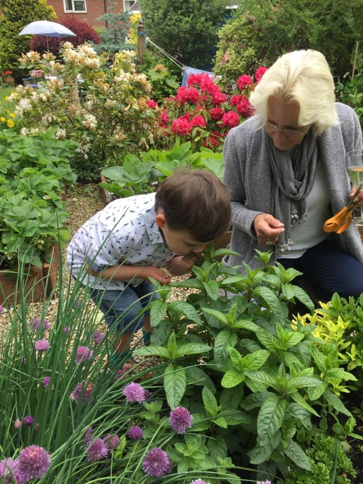 garden summer house mum blogger south west st albans grow your own gardening