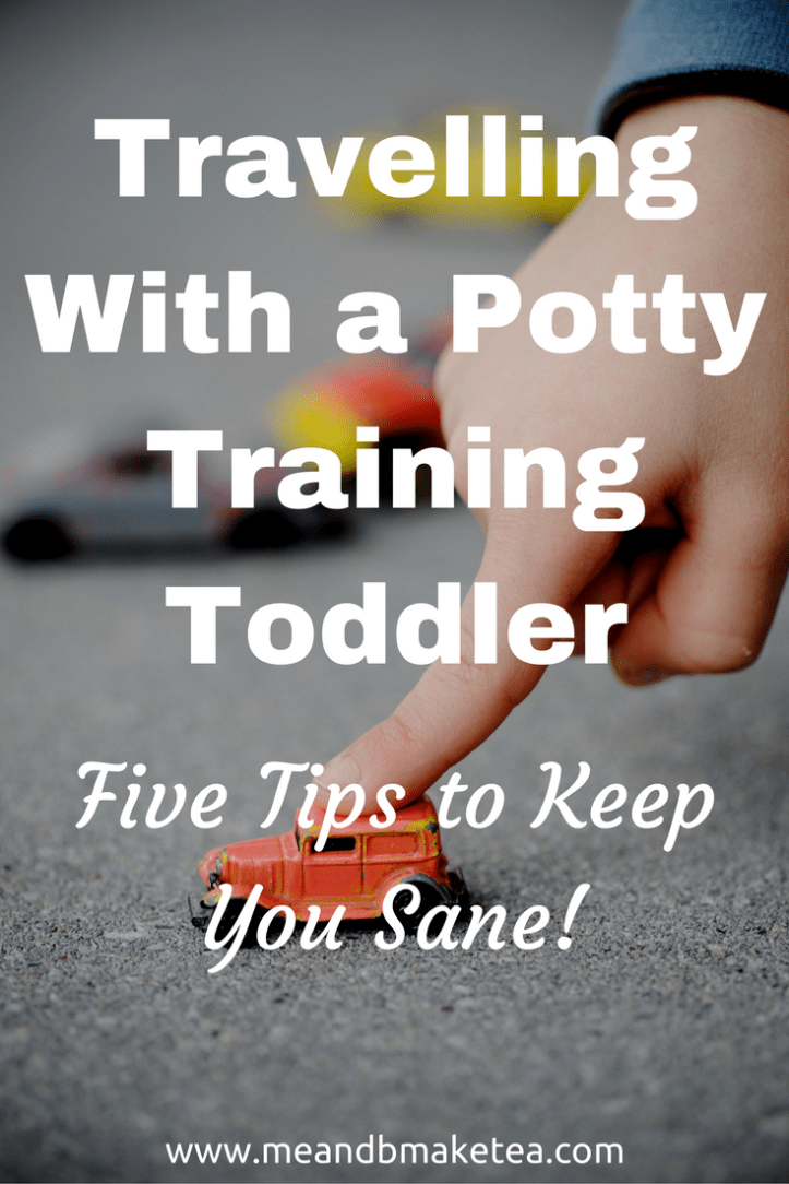 travelling with a toddler that is potty training tips what to do advice