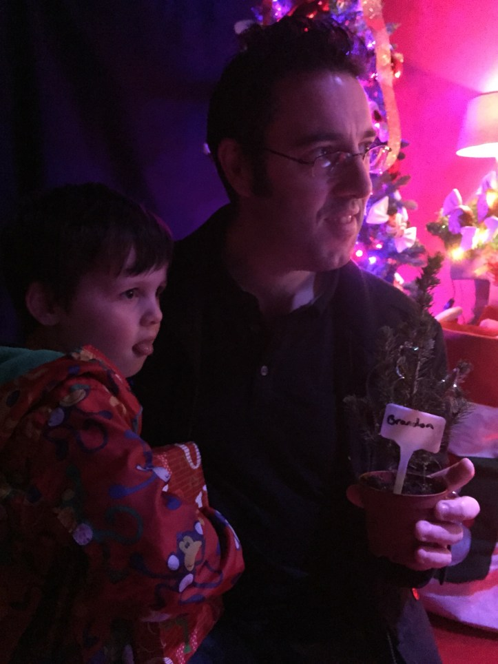 cadbury garden centre christmas 2016 pets fish santa grotto bristol soft play family review of the grotto
