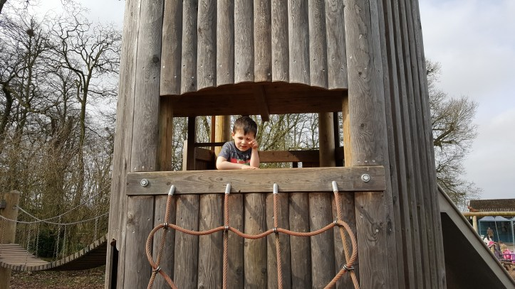 slimbridge with toddlers perfect family day out reviews wwt opening times what to take