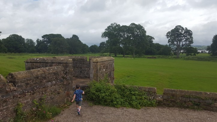 powderham castle devon families kids things to do